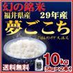 お米 10kg 夢ごこち 福井県産 白米 5kg×2 29年産 送料無料
