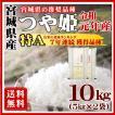 お米 10kg つや姫 宮城県産 29年産 白米 5kg×2袋 特A 送料無料 一部地域を除く
