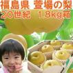 福島県 萱場産 20世紀 梨 1.8kg箱  (5〜7玉) 「ふくしまプライド。体感キャンペーン(果物/野菜)」