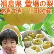 福島県 萱場産 あきづき 梨 1.8kg箱  (5〜7玉)