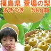 福島県 萱場産 あきづき 梨 5kg箱  (12〜18玉)