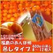 あんぽ柿400g(吊るしタイプ8〜12粒入)