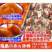 あんぽ柿詰合せ1kg箱(12〜16粒入)