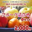 福島県産 フルーツ詰合せ 1,000円セット