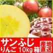 福島県産 サンふじ リンゴ 10kg箱 (24〜36玉入)