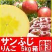 福島県産 サンふじ リンゴ 5kg箱 (12〜18玉入)