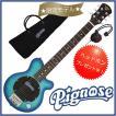 PIGNOSE / PGG-200FM-SBL ・ピグノーズの限定生産!「フレイム・トップ&シースルー」登場!(シースルー・ブルー)