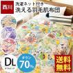 羽毛肌掛け布団 ダブル 東京西川 ダウン70% 衛生加工 ダウンケット 洗える掛け布団 夏の羽毛布団