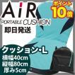 東京西川 エアー AiR シートクッション L 馬蹄形背もたれタイプ(80X40X5cm) ライトグリーン ケース付き