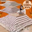 正方形 205×205cm 日本製 インド綿使用 コットン 綿100% 中空ポリエステル ストライプ ふわふわ 【ロカ】 父の日 ギフト