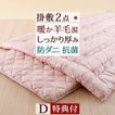布団セット ダブルサイズ 日本製 リーズナブルセット 羊毛混掛け敷きふとん2点セットD 布団セット[組布団 掛け敷き布団セット