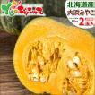 北海道 かぼちゃ 大浜みやこ 2玉入り(1玉 1.2kg) 北海道産 新かぼちゃ 新カボチャ 南瓜 秋野菜 グルメ  北海道 お取り寄せ