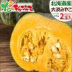 北海道 かぼちゃ 大浜みやこ 2玉入り(1玉 1.6kg) 北海道産 新かぼちゃ 新カボチャ 南瓜 秋野菜 グルメ  北海道 お取り寄せ