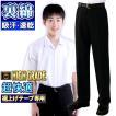 学生服 夏ズボン  裏綿ハイグレード ややスリム ワンタック対応あり