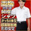学生服 開襟シャツ スクールシャツ 両胸ポケット 形態安定 ノンアイロン 半袖 B体 大きなサイズ