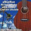 【あすつく】【23時間以内発送】アヌエヌエ コンサートウクレレ aNueNue  aNN-AMM2 Africa MahoganyII Concert Type