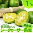 無農薬シークワーサー果実(約1kg)