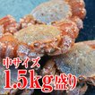 「(中サイズ)活毛ガニ1.5kg盛り!」 蟹/カニ/かに/直...