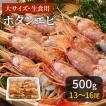 エビ ボタンエビ ぼたんえび 海鮮 ギフト 大13〜16匹 1パック500g 冷凍 (川村鮮魚店)