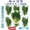 千葉県産 ルッコラ ロケット クール便 生イタリア野菜 鮮度保持フィルム包装 300g 税込 定額送料 トレファームの砂栽培育ちで元気な野菜です!