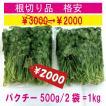 パクチー(根切り) 業務用 1kg 生野菜 税込 クール