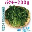 パクチー 200g 生野菜 税込 クール便 鮮度保持フィルム包装 トレファームの砂栽培育ちで元気な野菜です!