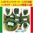 千葉県産 生野菜 レストラン パッケージ レタス (フリルアイス) 8袋とイタリア・エスニック野菜 お好み10品 詰合せ クール便