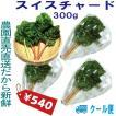 千葉県産 スイスチャード クール便 生イタリア野菜 鮮度保持フィルム包装 300g 税込 定額送料 トレファームの砂栽培育ちで元気な野菜です!