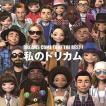 DREAMS COME TRUE / DREAMS COME TRUE THE BEST ! 私のドリカム(スペシャルプライス盤) [CD]