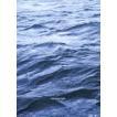 サカナクション/SAKANAQUARIUM2017 10th ANNIVERSARY Arena Session 6.1ch Sound Around(通常盤) [Blu-ray]