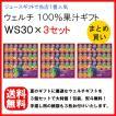 お中元 ジュース 「ウェルチ」 100%果汁ギフト(28本)×3個セット 手渡し用 紙袋付 ご自宅用 まとめ買い 191053091 WS30