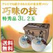 富良野 巧味の技 特秀品 3L 2玉 予約販売 7月中旬頃より順次出荷 着日指定不可 G-0405