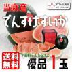 北海道 当麻産 でんすけすいか 優品 2L 1玉 予約販売 7月中旬頃より順次出荷 着日指定不可 G-0504