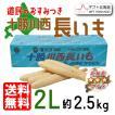 お年賀 北海道 十勝川西 長いも 2Lサイズ 約2.5kg D-0705