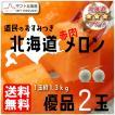 北海道 赤肉メロン優品2玉入 予約販売 7月中旬頃より順次出荷 着日指定不可 G-0304