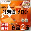 北海道 赤肉メロン良品2玉入 予約販売 7月中旬頃より順次出荷 着日指定不可 G-0301