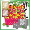 お中元 おかき かきもち 煎餅 和菓子  お中元 ギフト 人気 ロディ OKAKIアソート