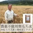 雑穀 もち麦 パック 国産 無農薬 栄養価最高峰の殻付き紫もち麦品種 セール