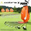 【代引き発送不可】 cobra×PUMA コブラ メンズ クラブ11本 ボックスセット プーマキャディバッグ付 (AMP Cell TD Club Set with Puma CartBag)