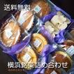 お中元 和菓子 横浜土産 送料無料 横浜銘菓詰合せ ご贈答用化粧箱入 各種のし 名入れ可