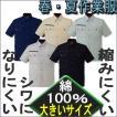 自重堂 84214 【 半袖シャツ 】 【大きいサイズ】 綿100%ストレッチ素材 【春・夏 作業服】 4L・5Lサイズ