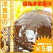 ハンバーグ 洋食亭のハンバーグ(ドミグラスソース)×5個