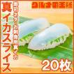 真イカ スライス 20枚 寿司ネタ 刺身用 (いか イカ 烏賊)