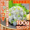 生しらす 生シラス(1kg 100g×10パッ...