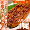 (うなぎ 鰻 蒲焼) 特大 国産 うなぎ 蒲焼き平均165g前後×1尾(1尾 ウナギ 鰻)