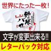 野球TシャツA1 野球バカ ホワイト 文字を変更してオリジナルTシャツになる