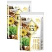イヌリン キクイモ 菊芋 サプリ サラシア コンブチャ ナットウキナーゼ ラクトフェリン サラリッチEX 2個セット 360粒 多殻麹 黒たまねぎ