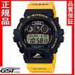 新品カシオ G-SHOCKジーショックGW-6902K-9JR Gショック ソーラー電波腕時計イルカ・クジラ