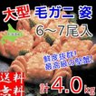 毛ガニ 約4kg前後 (6〜7尾入) ボイル 冷凍 北海道産 大型 毛蟹 けがに かに カニ 送料無料