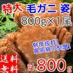 毛ガニ 約800g ボイル 冷凍 北海道産 特大 毛蟹 けがに かに カニ 送料無料